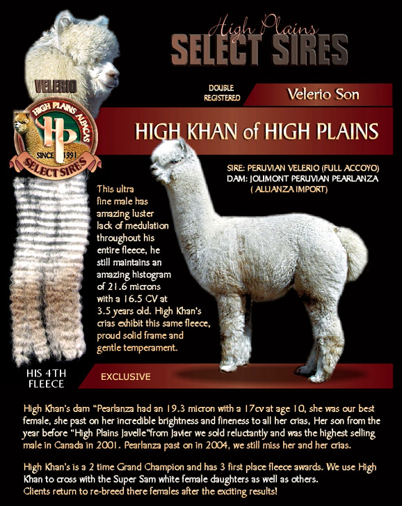 HighKhan - High Plains Alpacas